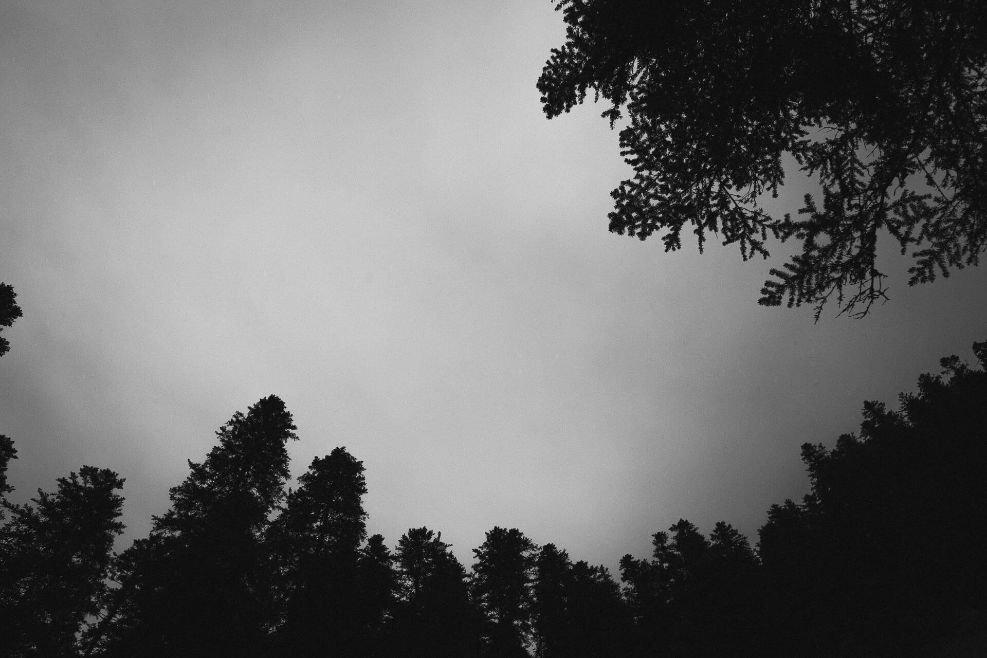 Photographe nature-3